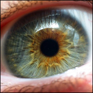 ljuskänsliga ögon vitaminbrist