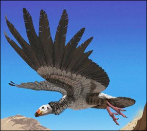 världens tyngsta flygande fågel